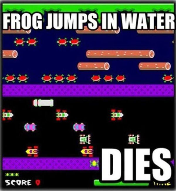 funny video game memes Frog jumps in water
