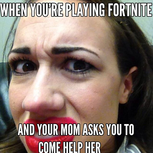 Funny Fortnite Memes for Gamers