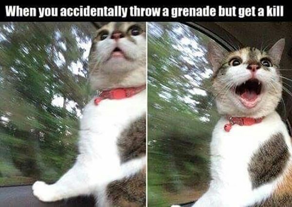 videogame memes when you accidentally throw a grenade but get a kill