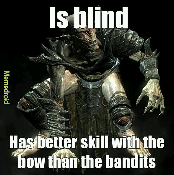 Hilarious Video Gaming Memes - is blind