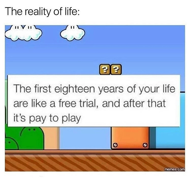 Best Video Game Memes - the first eighteen years of your life are like a free trial